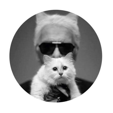 Choupette, à nouveau muse pour Karl Lagerfeld - BlondiBrunette